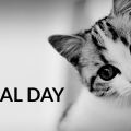 world animal day