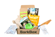 Barkbox for dogs