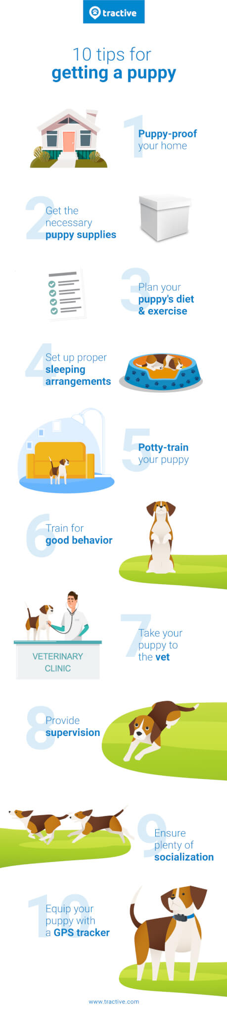 Bringing Home A New Puppy,Tips for New Puppy Owners