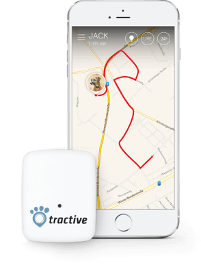 Tractive Blog - Tractive GPS am iPhone