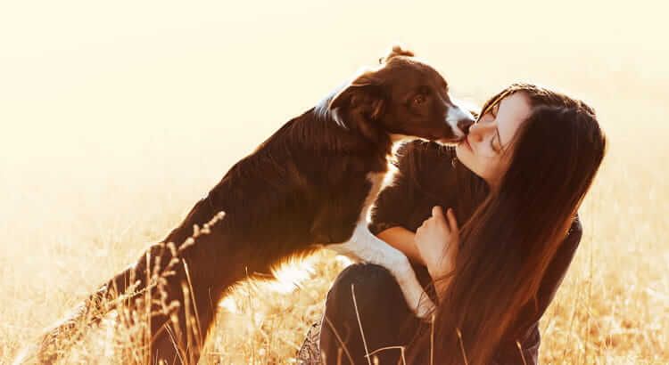 8 regali per i cani...dal cuore