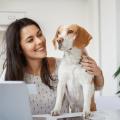 Cane in ufficio: 5 buone argomentazioni