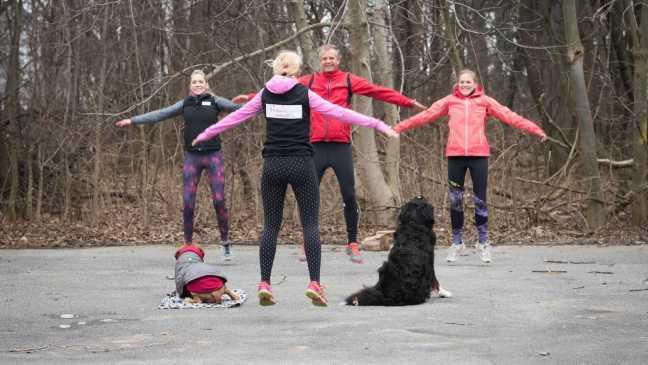 Fit werden mit Hund: Hampelmänner