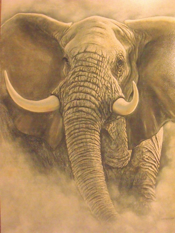Elephant Paintings Tracts4free