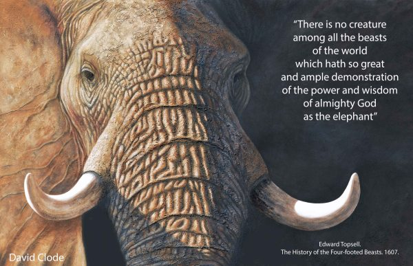 Elephants Painting with Quote