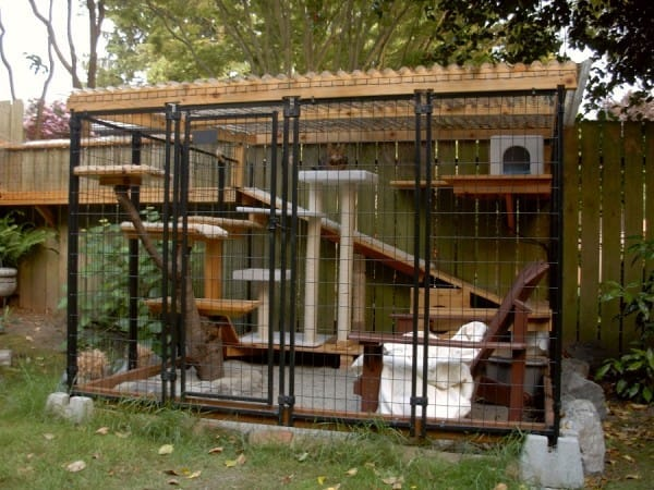 ... a mesh-covered space either adjacent to the house or free-standing with  or without a linking tunnel. You can find ideas to excite you and your cat  here ... - Catios And Collars Cool For Cats And Wildlife - Tracy Brighten