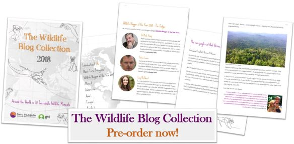 The Wildlife Blog Collection ebook front cover