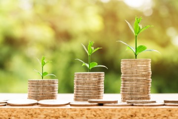 Business copywriting image of plant seedlings growing from coins