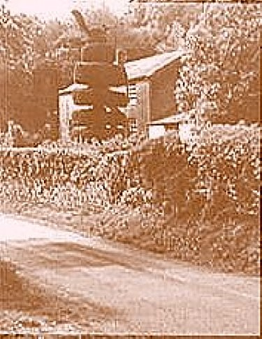 Overbrook's distinctive peacock topiary was cut once a year