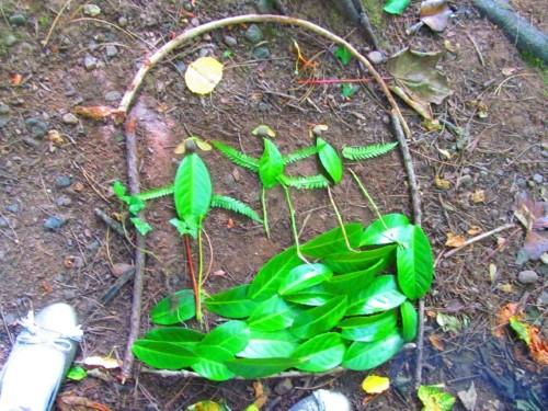 Leaf art at its best
