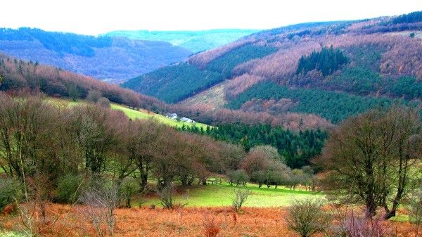 Cwmcarn Forest is beautiful at any time of year but especially so in autumn