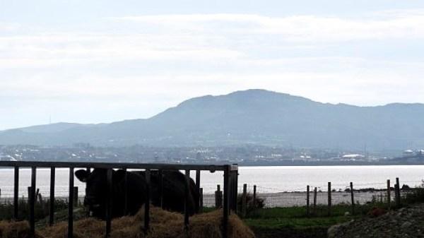 Holyhead mountain across the bay