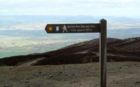 National trail waymark on Offa's Dyke Path