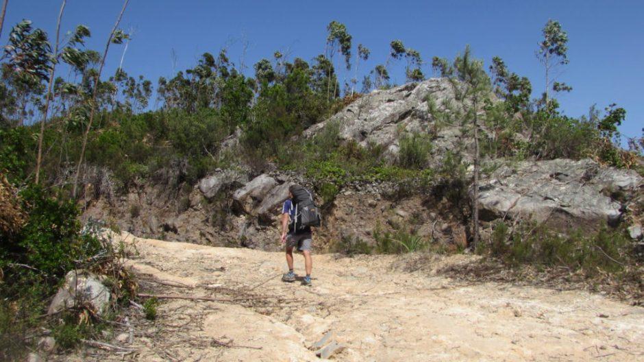 Climbing Picota