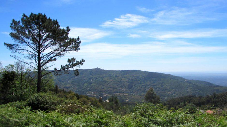 The breathtaking scenery of the Serra de Monchique (looking inland)