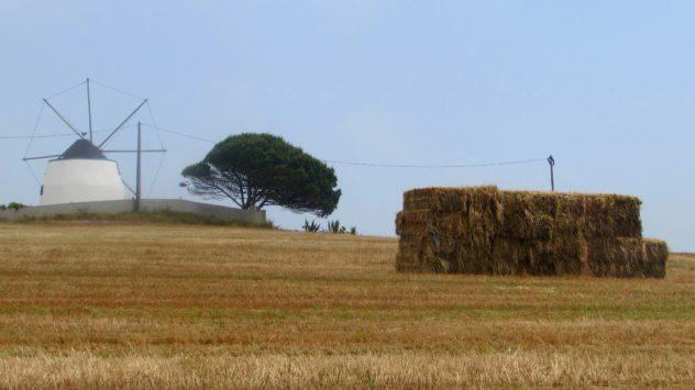 The agricultural landscape near Torres Vedrasv
