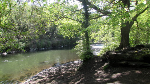 River Ebbw, near Risca, Caerphilly Borough, Wales