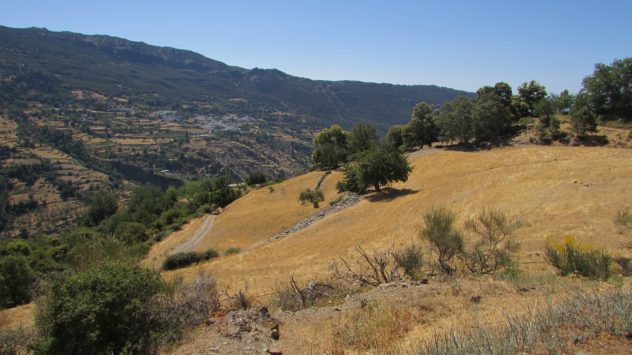 Poqueno ravine, Alpujarros, SIerra Nevada, Granada, Spain