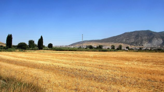 Arable farming, Padul, Lecrin Valley, Granada
