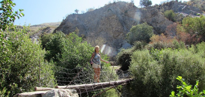Andalusia: walking over olives