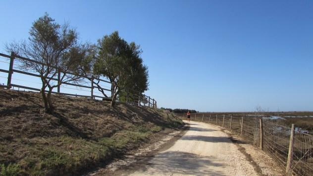 PR1 A Rocha Delicada, Mexilhoeira Grande, Algarve, Portugal