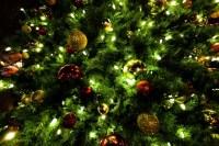 Downtown Tracy Holiday Parade & Tree Lighting - Tracy City ...