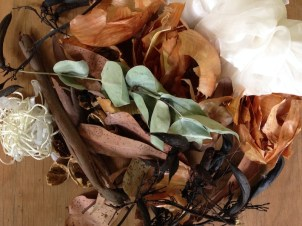 Plants for the dyepot.