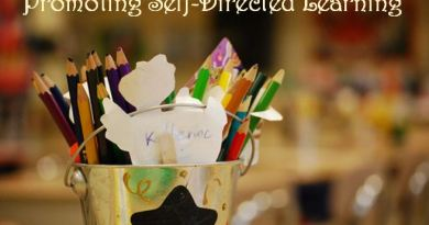 Promoting Self-Directed Learning