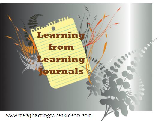 Learning from Learning Journals