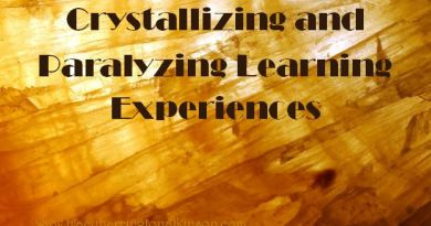 Crystallizing and Paralyzing Learning Experiences