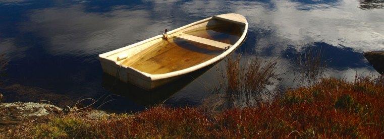 Leaky Boat Tracy Jones