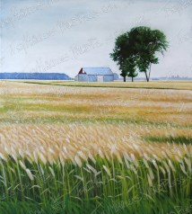 Agrarian Paradise, Acrylic Paint on Canvas, 36x40 in, 2015