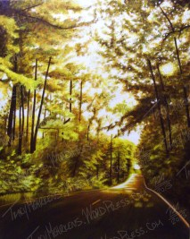 The Hallowed Road, Oil Paint on Canvas, 24x30 in, 2013