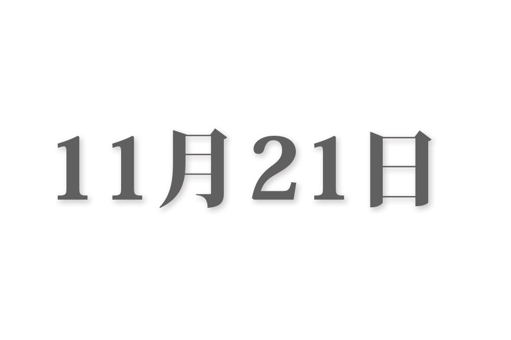 11月21日と言えば? 行事・出来事・記念日|今日の言葉・誕生花・石・星|総まとめ