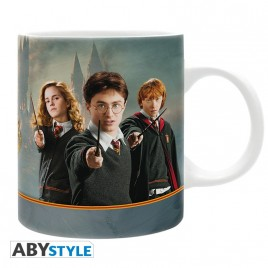 HARRY POTTER - Tazza - 320 ml - Harry & Cie - subli - Con scatola x2