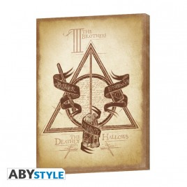 HARRY POTTER - Canvas - Deathly Hallows (30x40) x2
