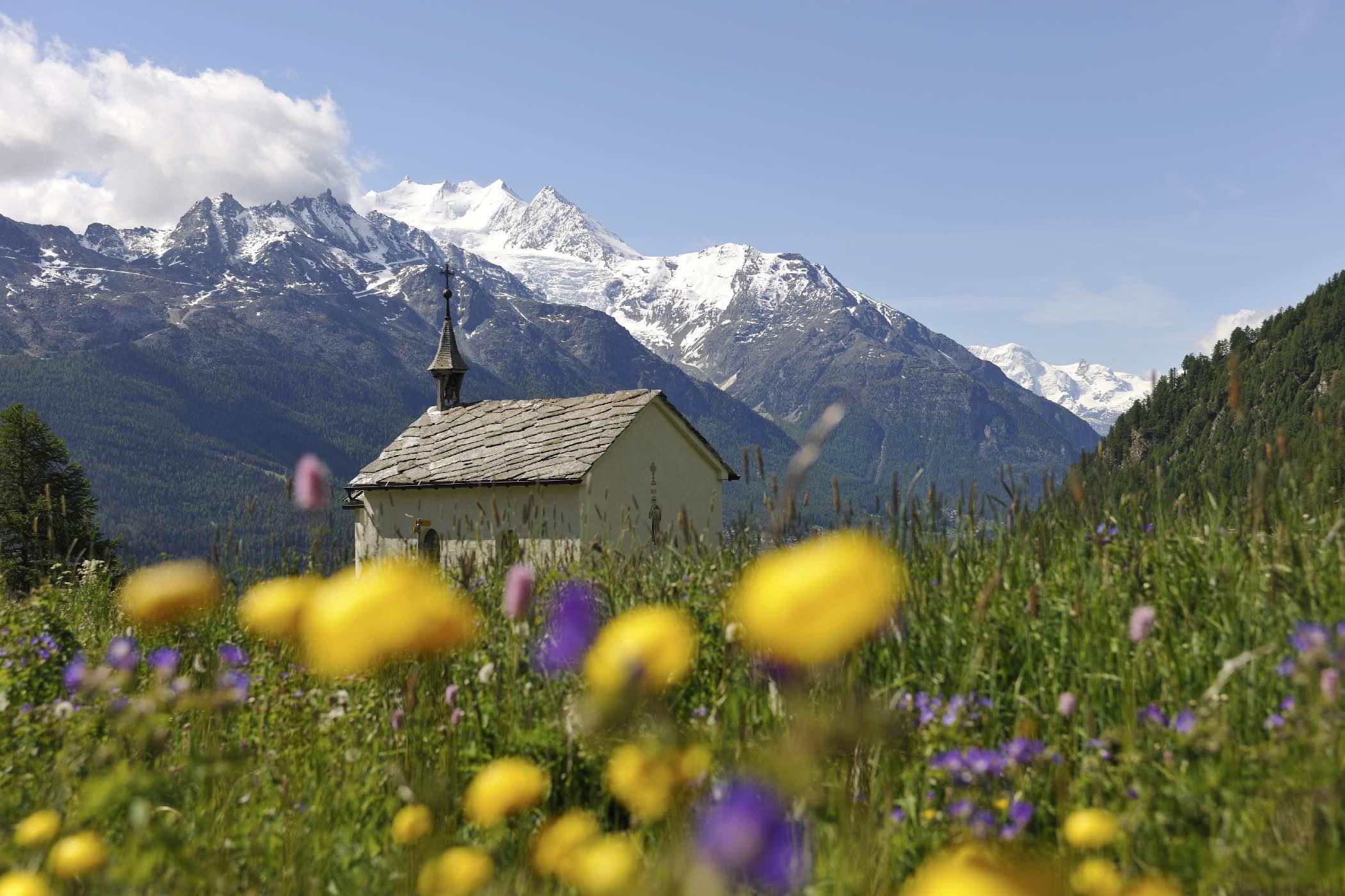 Wallis Primavera