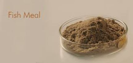 A primer on Fishmeal 22