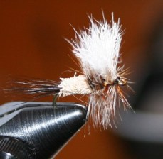 The Ausable Wulff was created by Fran Betters of Wilmington, N.Y.