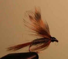 adams wet fly is a good wet fly for fly fishing a a great addition to your tackle box for regular fishing