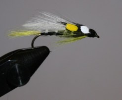 The black ghost streamer fly is meant to be fished on sinking line within the water column