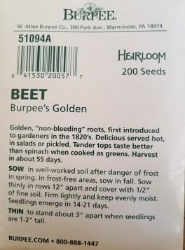 beet gardening