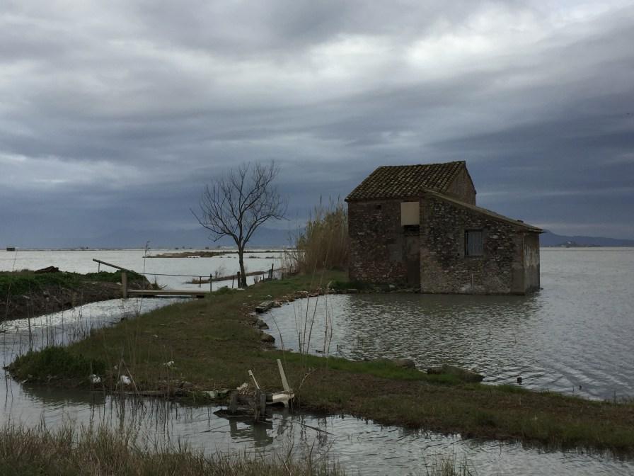 Título: Construcción sobre el agua, Autor: Luis Cortés