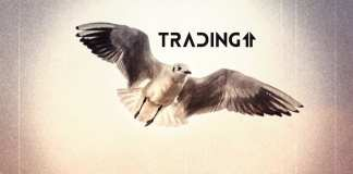 up hore update trading11