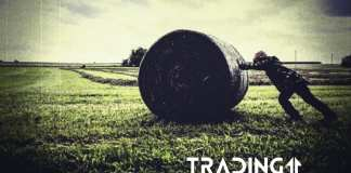 analyza trading11 otočka bitcoin