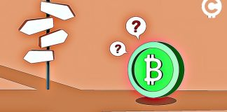 bitcoin-cash-bsv-abc-fork-review-cryptocurrency-