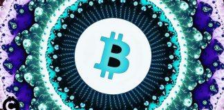 bitcoin predikcia teória