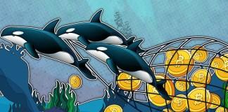 Přichází cenová exploze Bitcoinu! Dokazuje to chování velryb a institucí na trhu