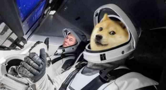 TEHEEHEE – Elon Musk tweetuje po 80% pumpě Dogecoinu