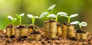 Jak úspěšně investovat na burze - Cesta k milionu #3